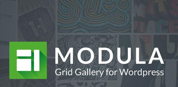 Modula Pro v2.5.0 + Addons